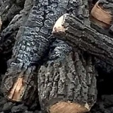 Cords of Alligator Juniper Firewood