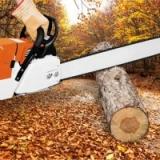 Firewood Eduction