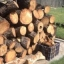 Cords of Pinyon/Pine Firewood