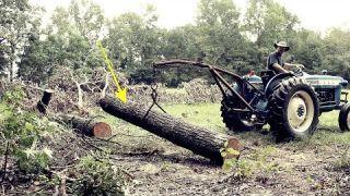 Oak Wood, Learn About Oak Wood. Cords of Wood
